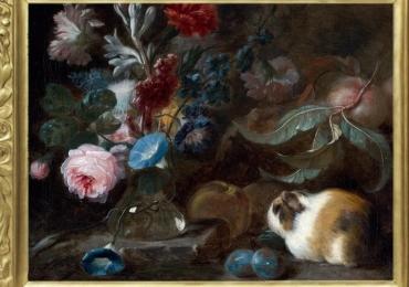 Tablou natura moarta cu fructe flori si porci de guineea, tablou cu animale salbatice,