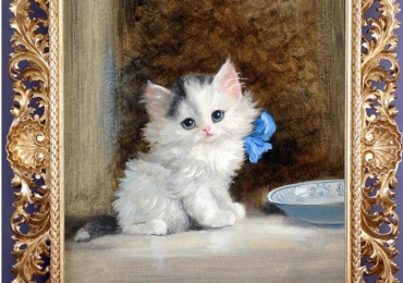 Tablou, pisica cu fundita albastra, tablou cu animale salbatice, tablouri cu animale pi