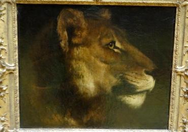 Tablou portret de leoaica, tablou cu animale salbatice, tablou cu animale exotic