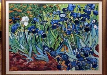 Van Gogh Camp de Iris, tablou cu tufa de flori, tablou cu florimov, tablou floral, tablou cu irisi