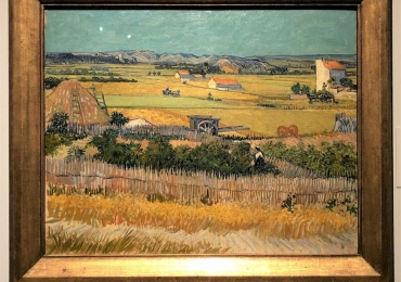 Vincent van Gogh, Saint Rémy de Provence, 1890,  tablou peisaj de vara, Reproduceri pictori celebri