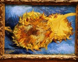 Vincent van Gogh, Sunflowers 1887, Tablouri cu flori Realizate la Comanda, Reproduceri Pictur